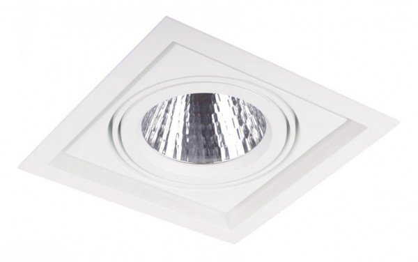 Asta Module LED Downlight